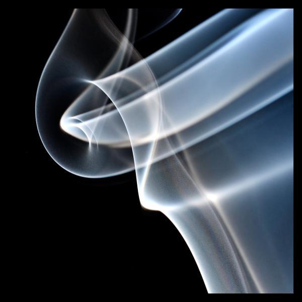 rauch_10