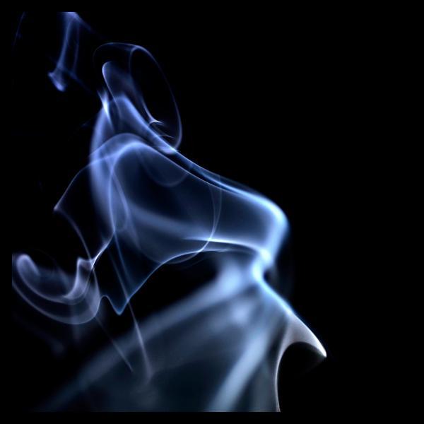 rauch_17