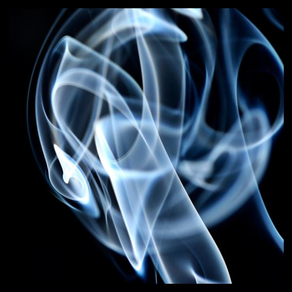 rauch_22