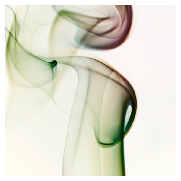 rauch_28