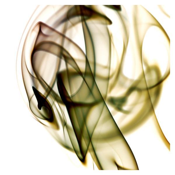 rauch_30