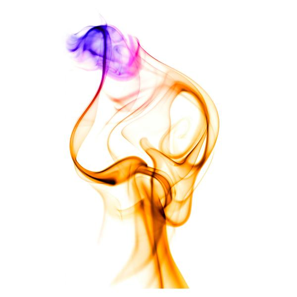 rauch_37