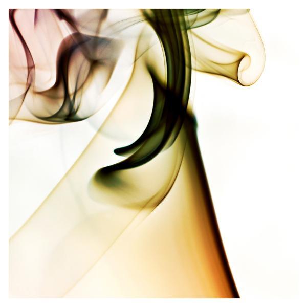 rauch_48